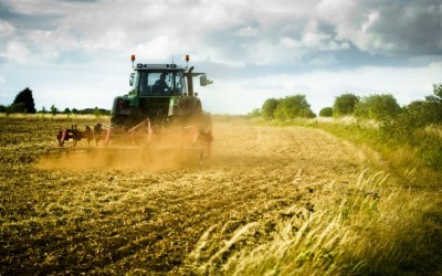 Agricultural diversification – beware tax pitfalls