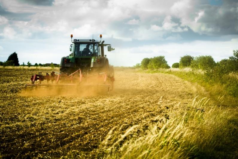 Agricultural diversification – beware tax pitfalls