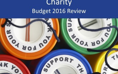 Charity 2016 Budget review and analysis for trustees