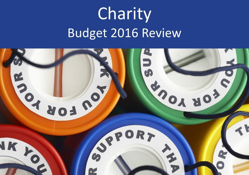 Charity 2016 Budget review