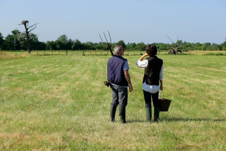 Tax opportunities for UK farmers and agricultural businesses
