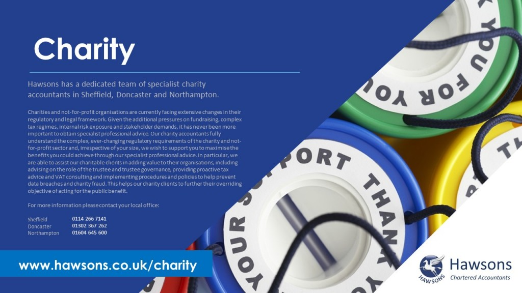 Charity accountant services PDF