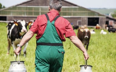 4 succession planning tips for the family farm