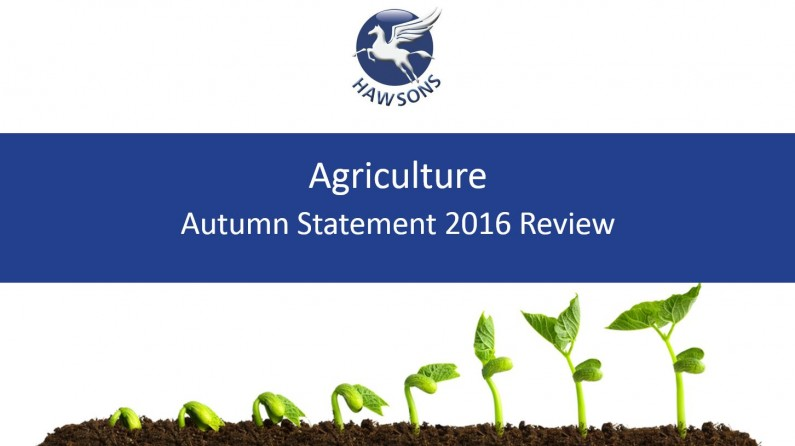 Agriculture Autumn Statement 2016 review