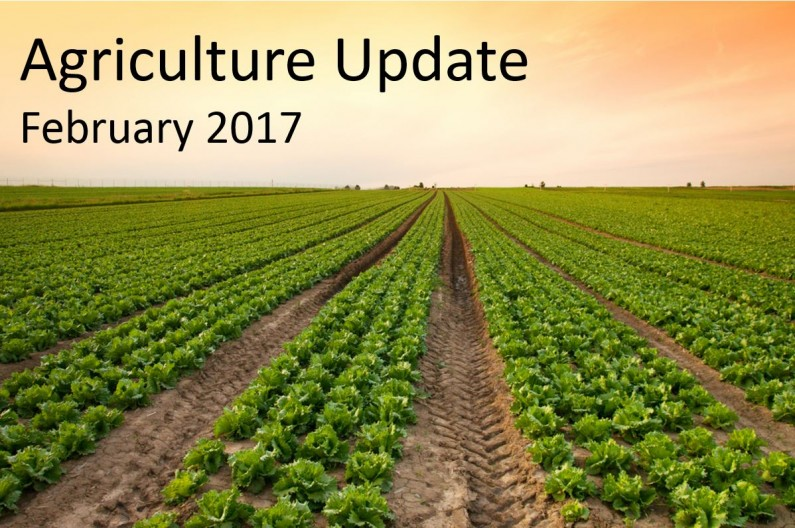 Agriculture update for UK farmers – February 2017
