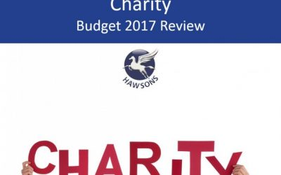 Charity 2017 Budget review and analysis
