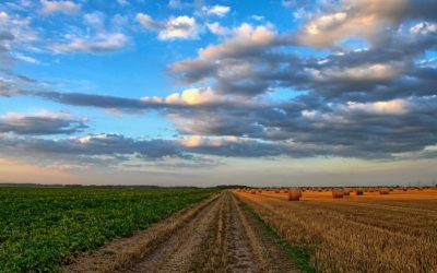 Farmers' Averaging: It pays to spread