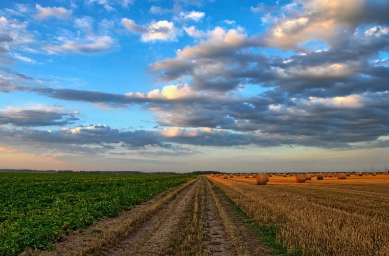 farmers' averaging