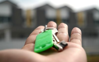 Government Announces Stamp Duty Holiday